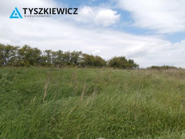 Zdjęcie 2 oferty TY840246 Gdańsk Lipce, ul. Borkowska