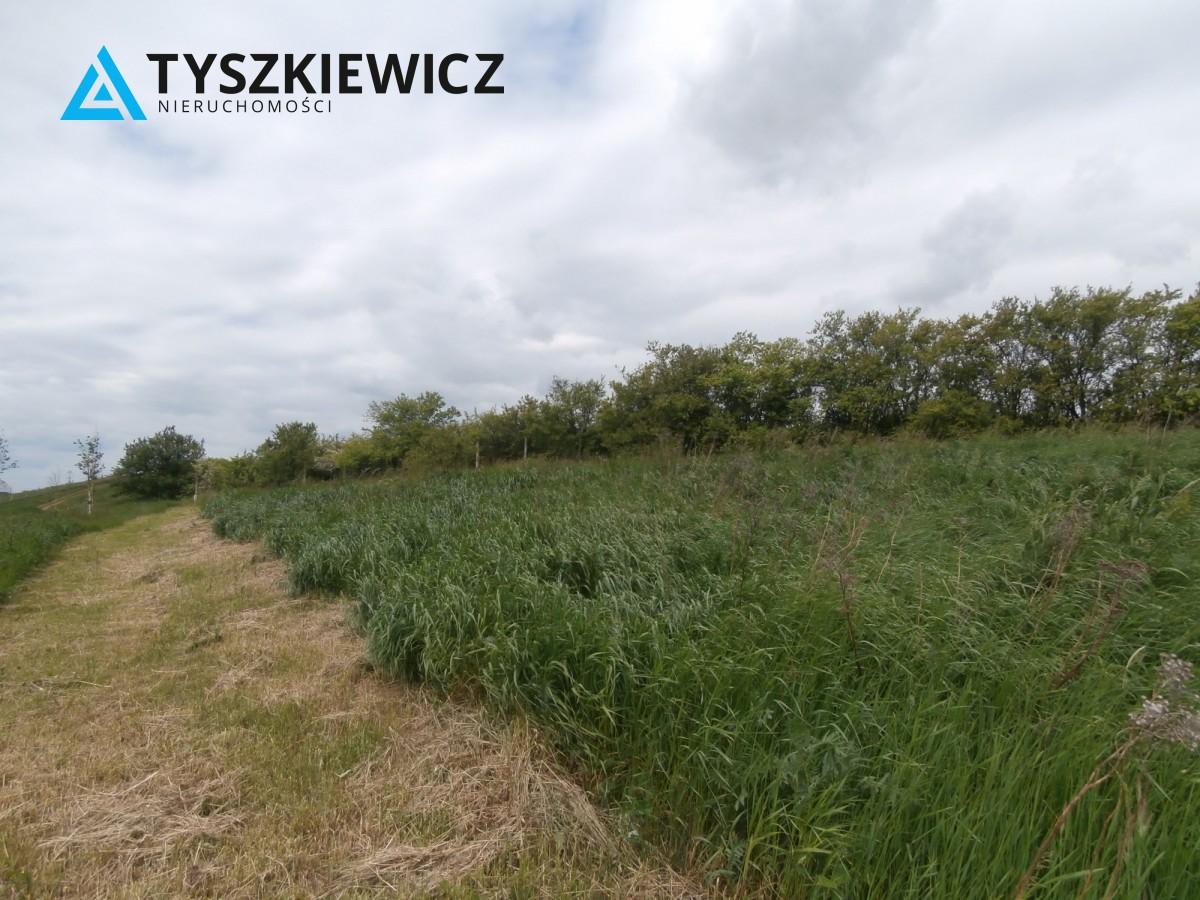 Zdjęcie 7 oferty TY840246 Gdańsk Lipce, ul. Borkowska