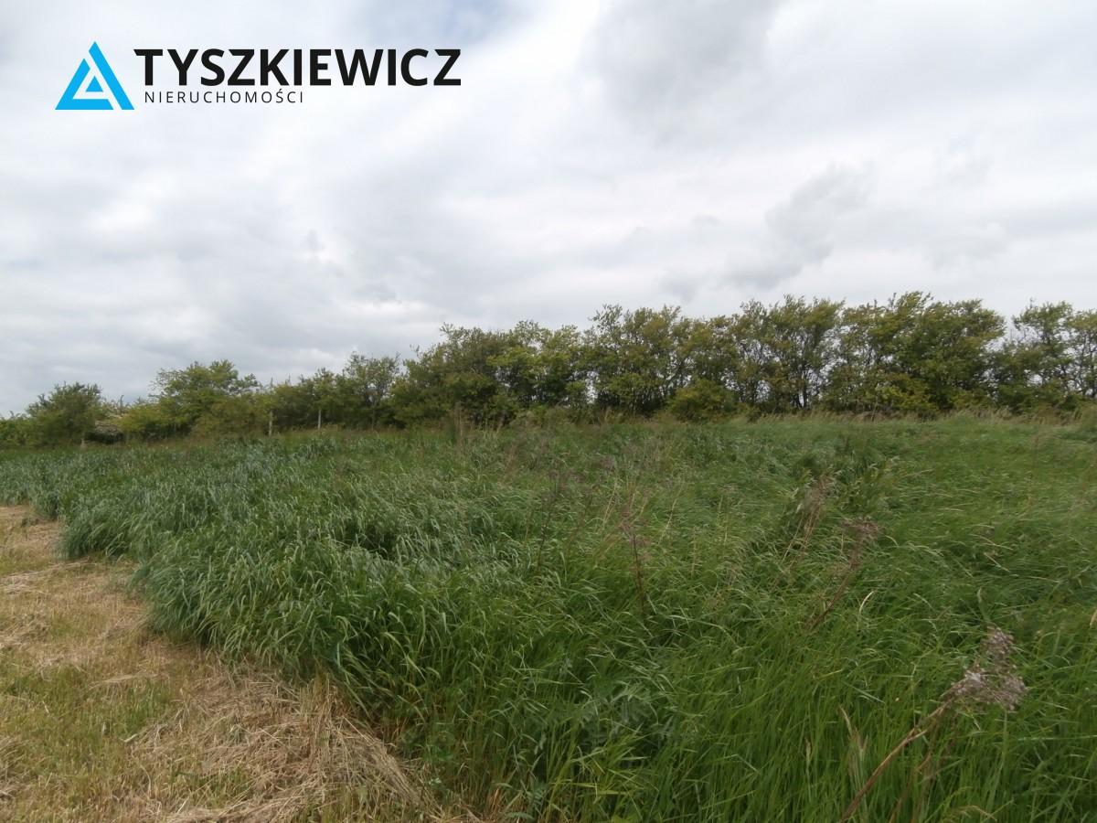 Zdjęcie 9 oferty TY840246 Gdańsk Lipce, ul. Borkowska