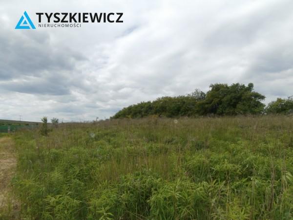 Zdjęcie 12 oferty TY840246 Gdańsk Lipce, ul. Borkowska