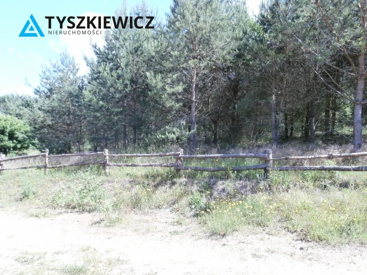 Zdjęcie 4 oferty TY173840 Żukówko,