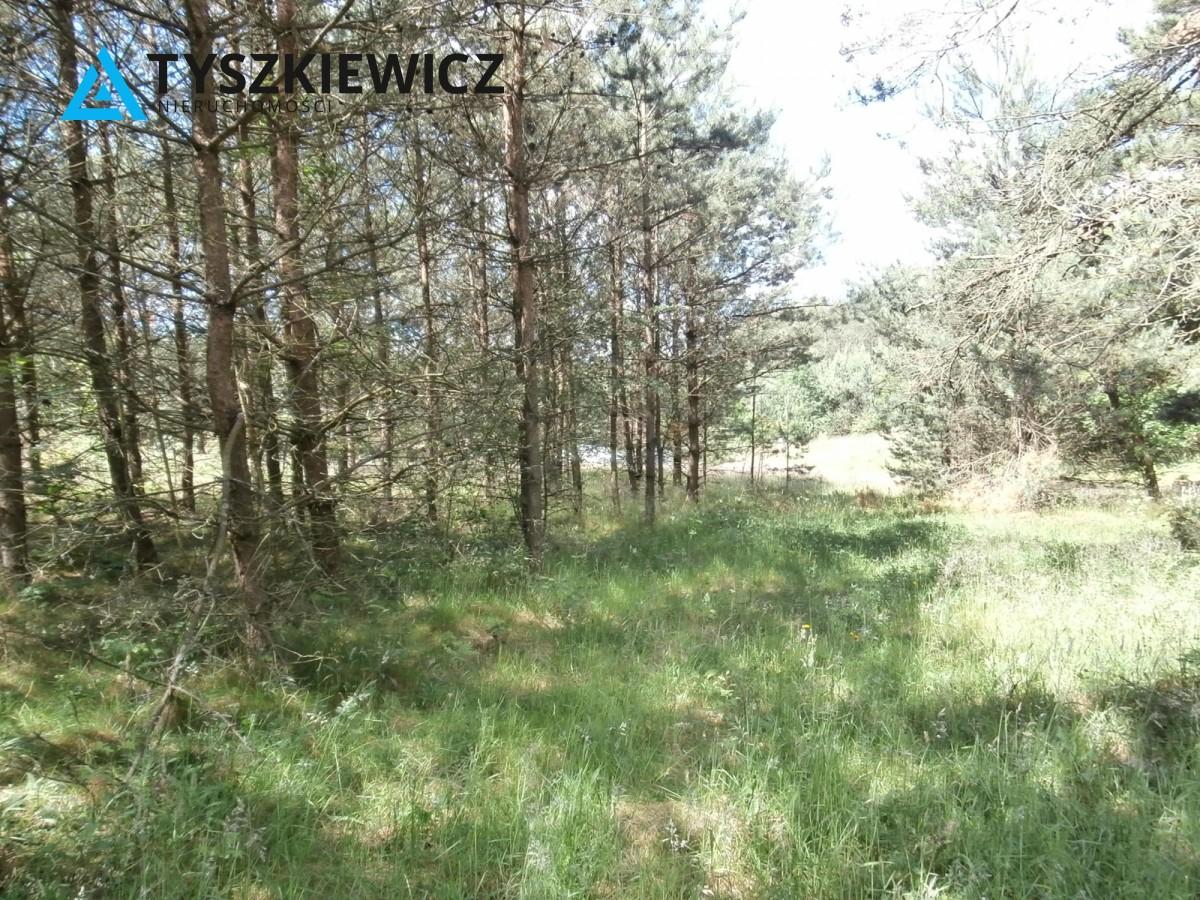 Zdjęcie 6 oferty TY173840 Żukówko,