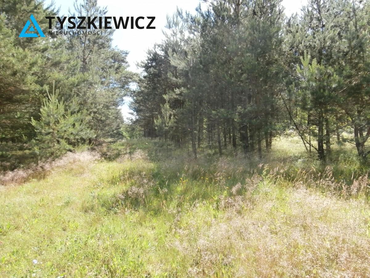 Zdjęcie 8 oferty TY173840 Żukówko,