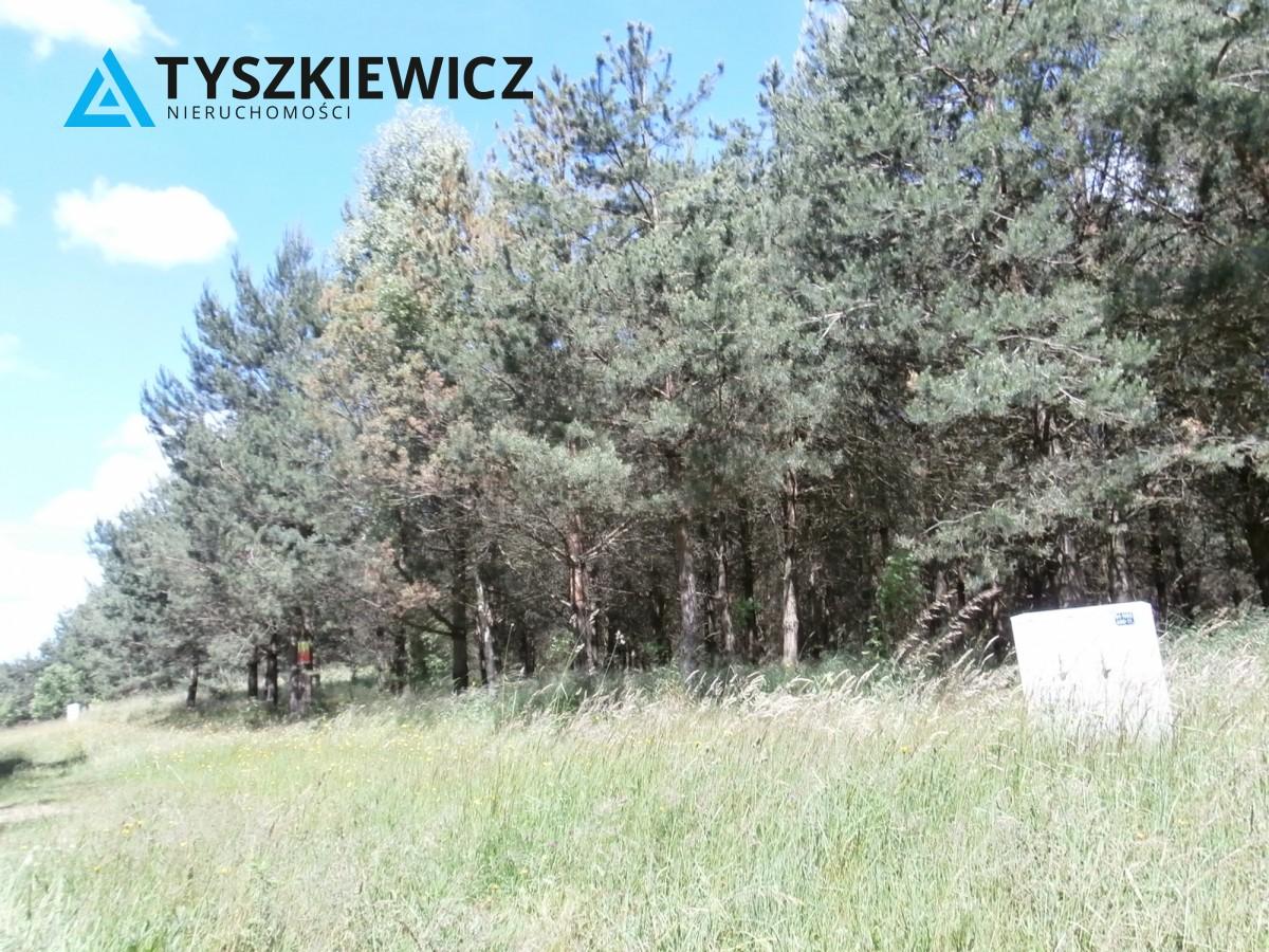 Zdjęcie 2 oferty TY373399 Żukówko,
