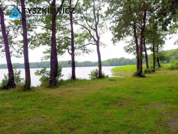 Zdjęcie 2 oferty TY392171 Salinko,