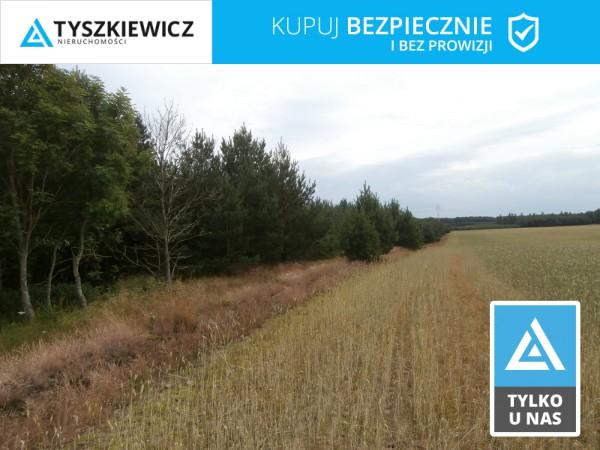 Działka rolna na sprzedaż, Sylczno