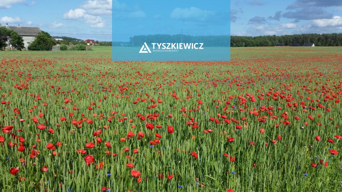 Zdjęcie 4 oferty TY114977 Chwaszczyno, ul. Sambora I