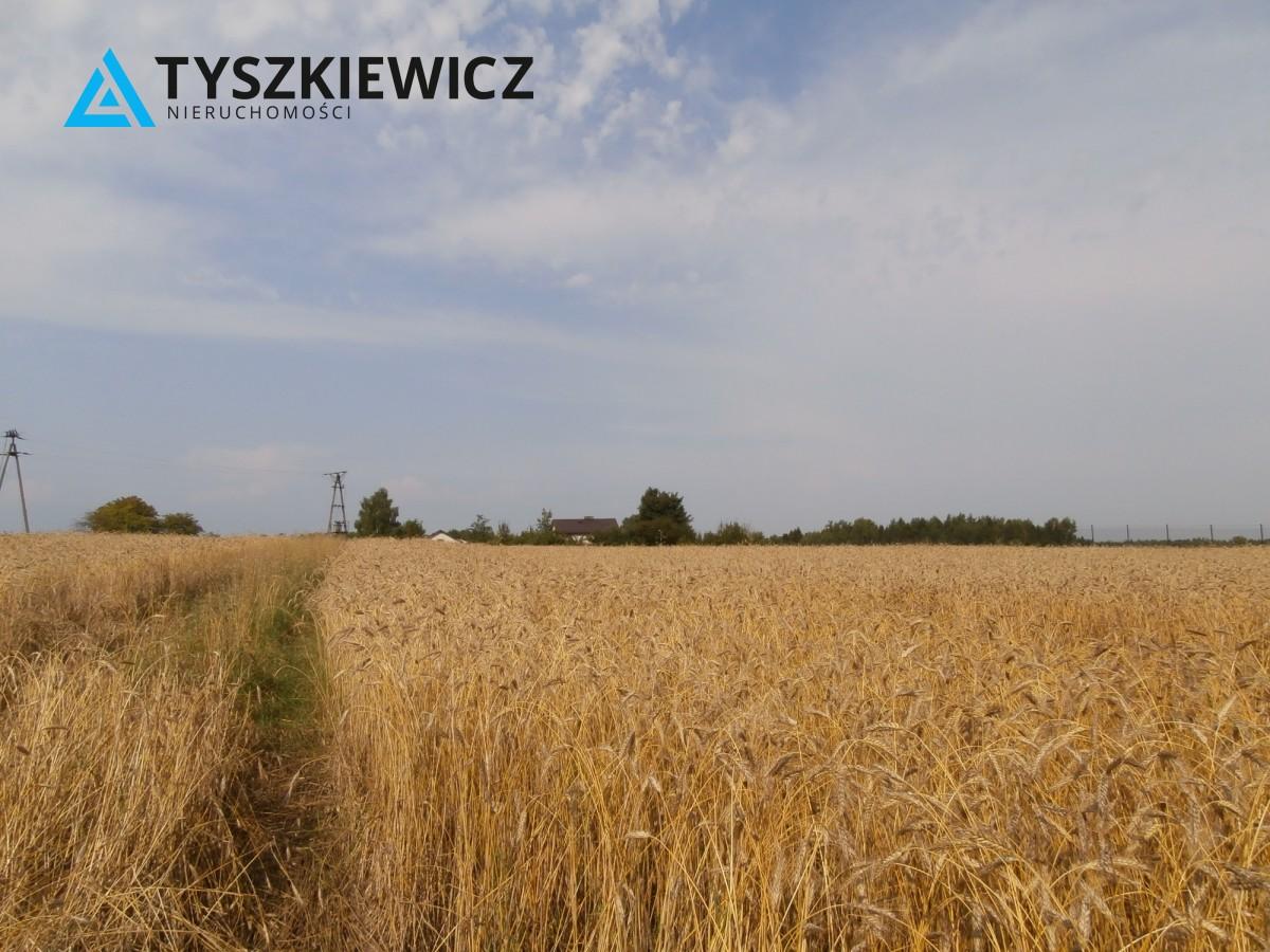 Zdjęcie 12 oferty TY578814 Skrzeszewo Żukowskie,