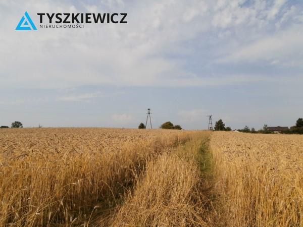 Zdjęcie 13 oferty TY578814 Skrzeszewo Żukowskie,