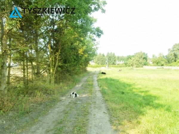 Zdjęcie 1 oferty TY589163 Skrzeszewo Żukowskie,