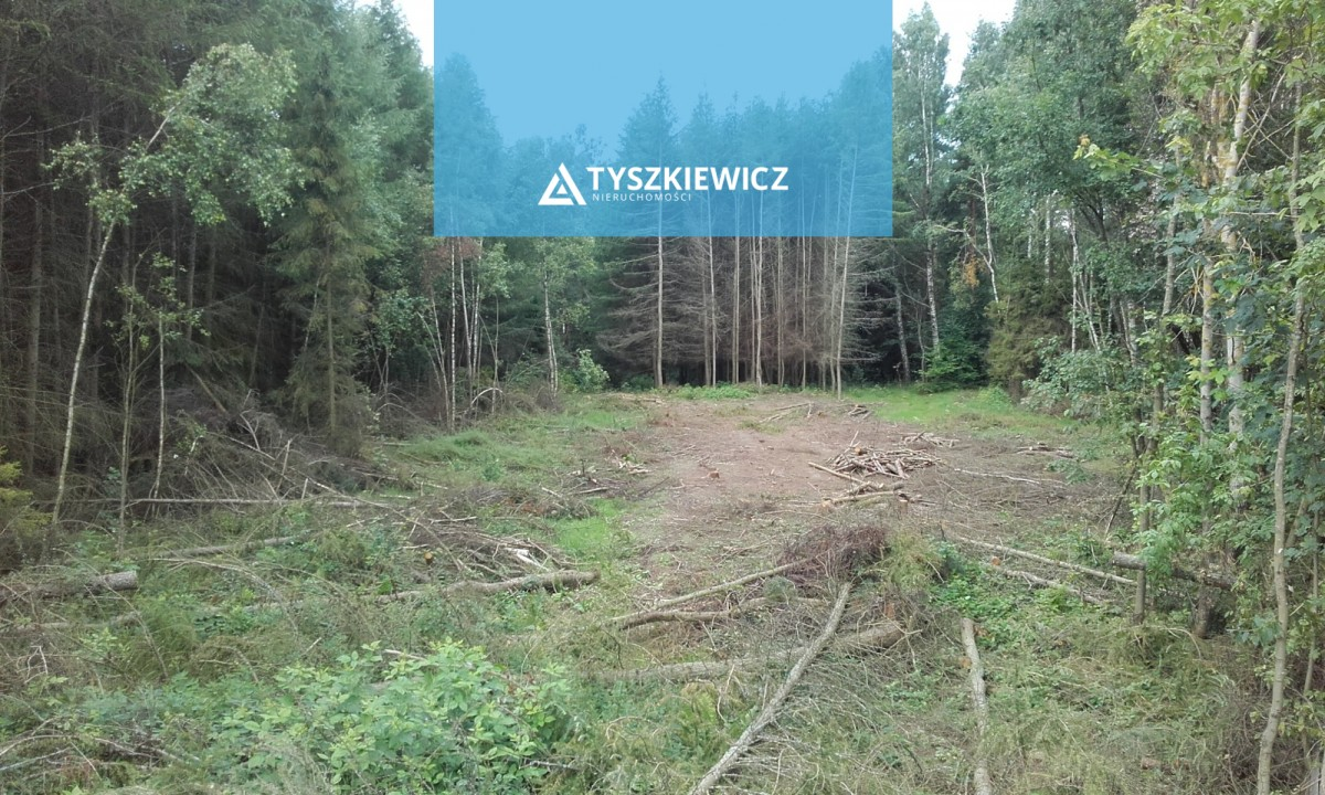 Zdjęcie 4 oferty TY102886 Mierzeszyn, ul. Gdańska