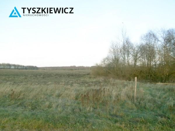 Zdjęcie 1 oferty TY556655 Pomlewo, ul. Świerkowa