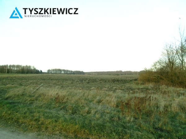 Zdjęcie 5 oferty TY556655 Pomlewo, ul. Świerkowa