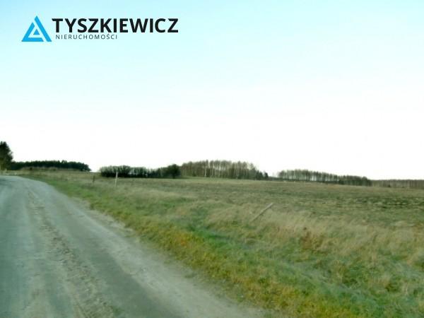 Zdjęcie 6 oferty TY556655 Pomlewo, ul. Świerkowa