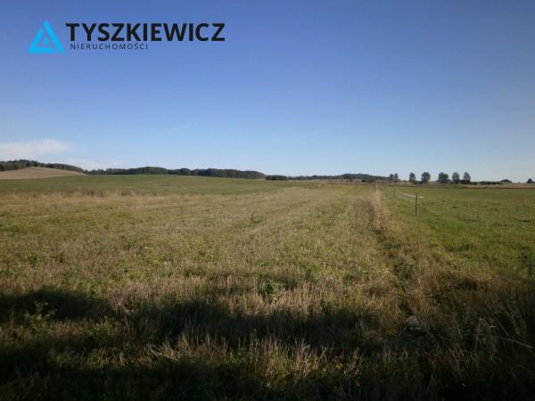 Zdjęcie 4 oferty TY761018 Borzytuchom,