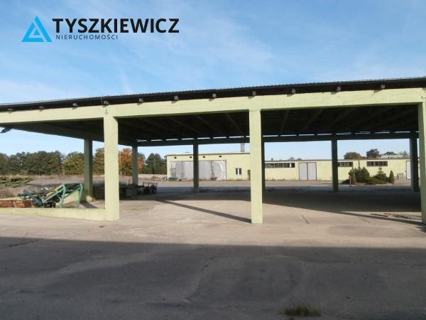 Zdjęcie 2 oferty TY262843 Borowy Młyn, ul. Długa