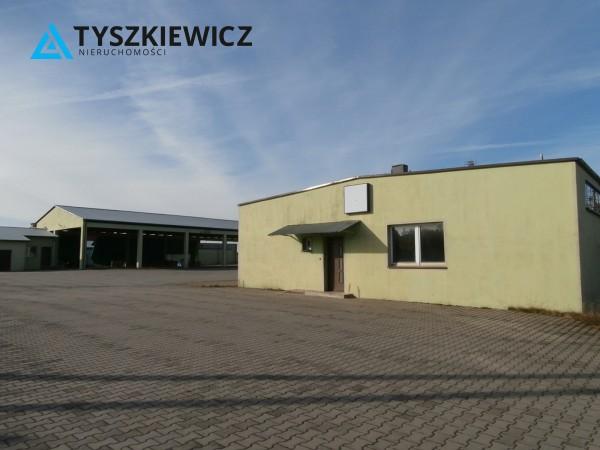 Zdjęcie 5 oferty TY262843 Borowy Młyn, ul. Długa