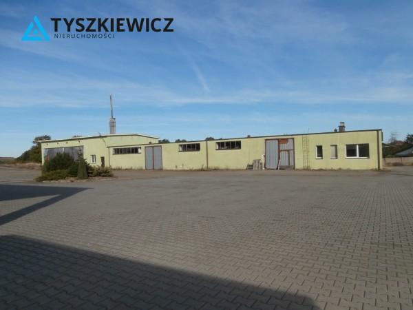 Zdjęcie 6 oferty TY262843 Borowy Młyn, ul. Długa