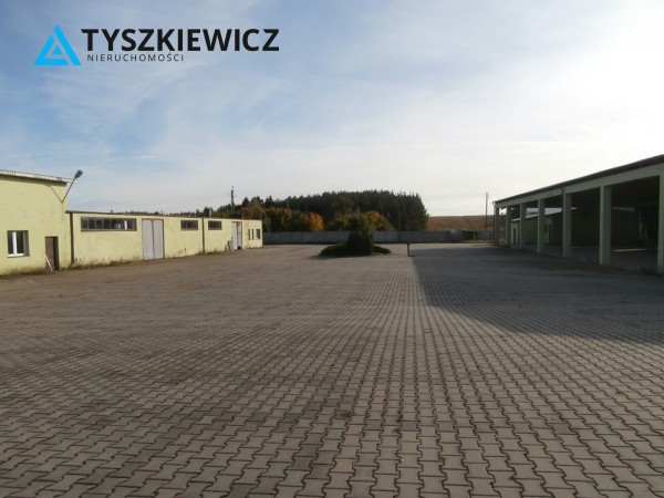 Zdjęcie 12 oferty TY262843 Borowy Młyn, ul. Długa