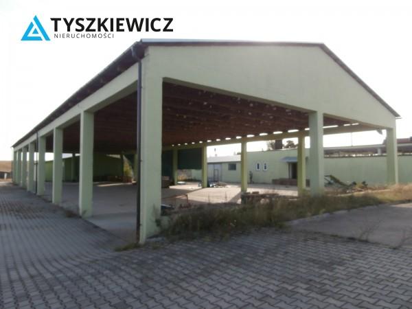 Zdjęcie 13 oferty TY262843 Borowy Młyn, ul. Długa