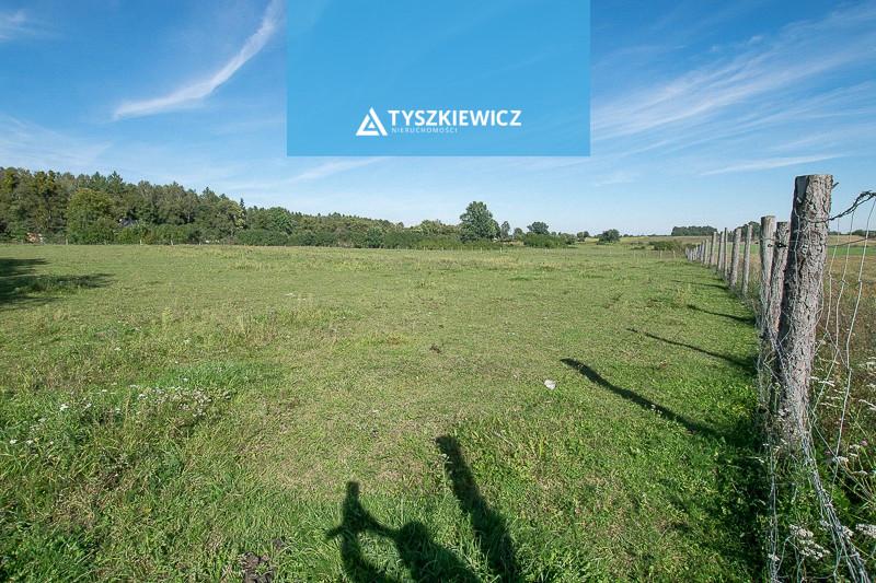 Zdjęcie 5 oferty TY714630 Buszkowy, ul. Dolna