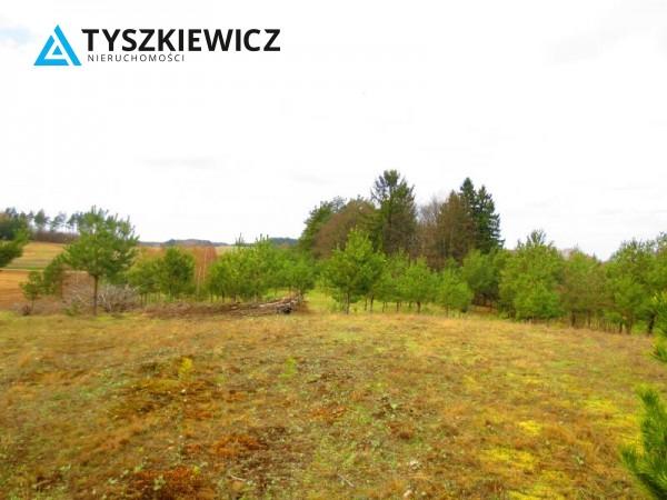 Zdjęcie 4 oferty TY061978 Bytów, Gołczewo