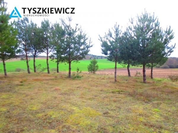 Zdjęcie 5 oferty TY061978 Bytów, Gołczewo