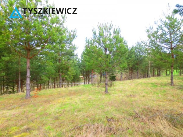 Zdjęcie 7 oferty TY061978 Bytów, Gołczewo