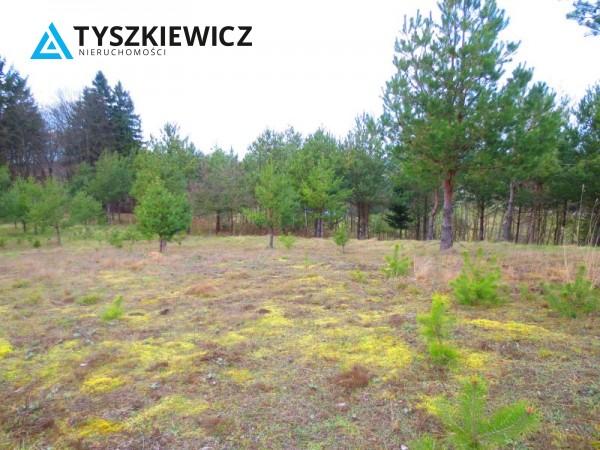 Zdjęcie 11 oferty TY061978 Bytów, Gołczewo