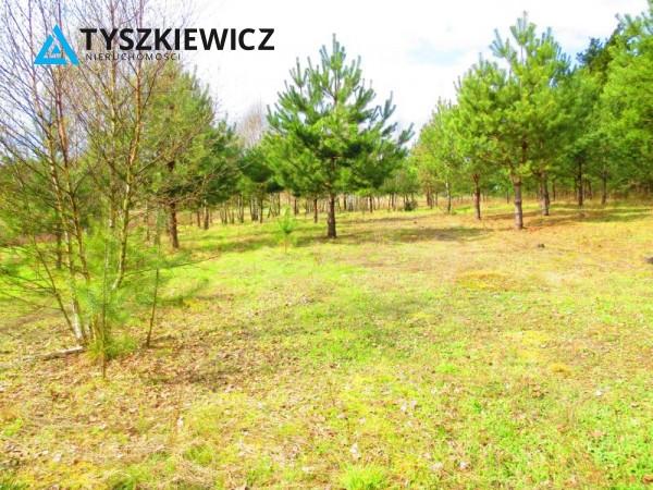 Zdjęcie 15 oferty TY061978 Bytów, Gołczewo