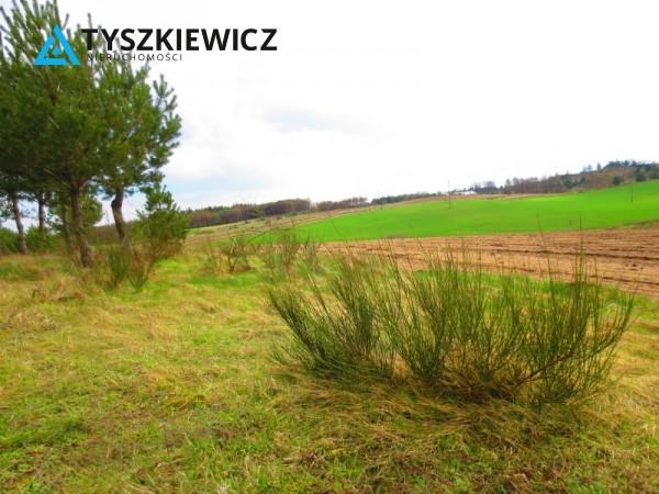 Zdjęcie 16 oferty TY061978 Bytów, Gołczewo