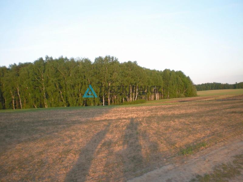 Zdjęcie 3 oferty 8634 Lisewiec, ul. Ustronna