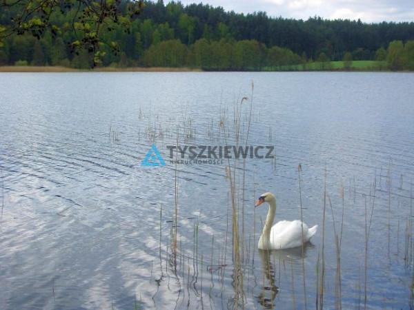 Zdjęcie 38 oferty TY062174 Dziemiany, Kalisz