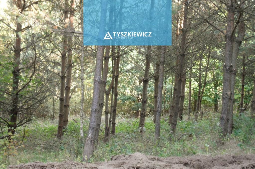 Zdjęcie 3 oferty 8951 Żukówko,