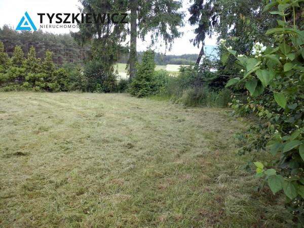 Zdjęcie 8 oferty TY859043 Cieciorka,