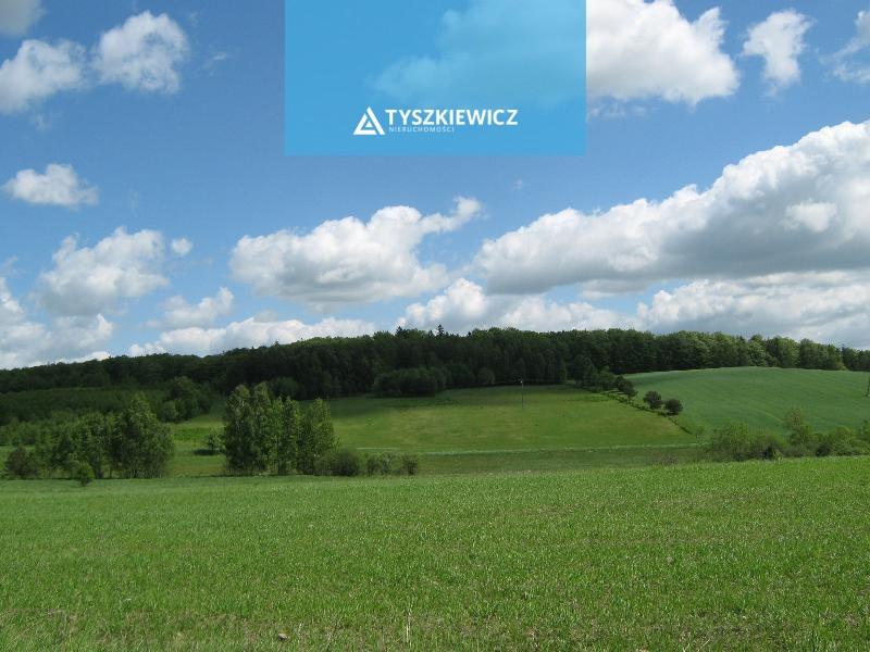 Zdjęcie 1 oferty TY062978 Mierzeszyn, Droga 226