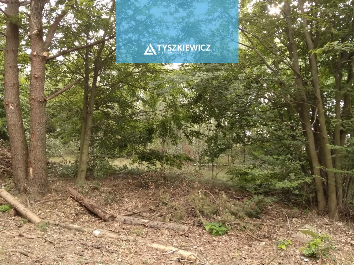 Zdjęcie 6 oferty TY272475 Sulęczyno,