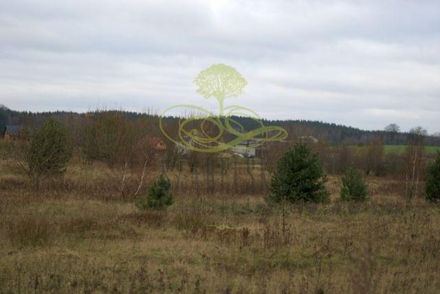 Skrzeszewo Żukowskie