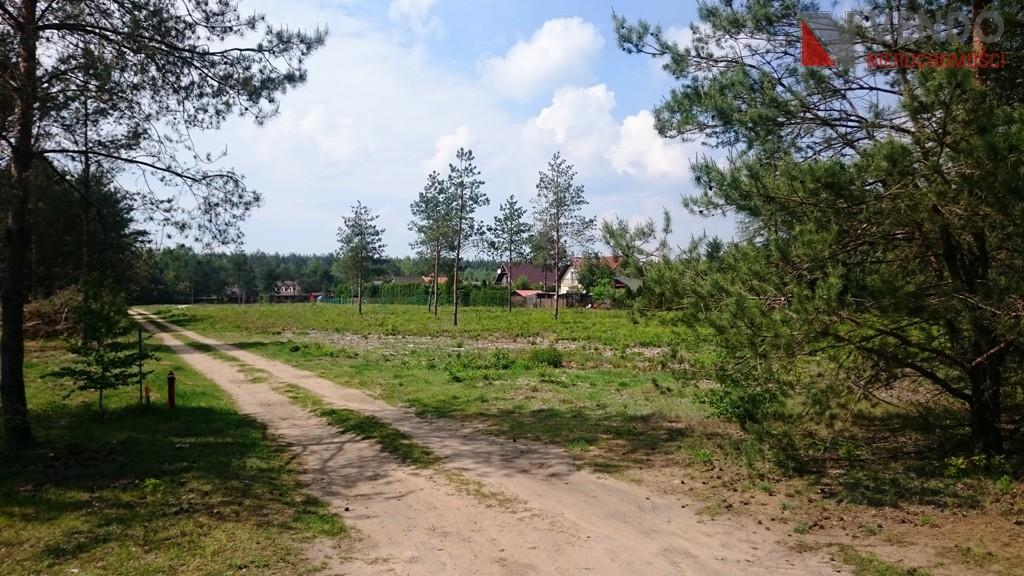 Stęszewko