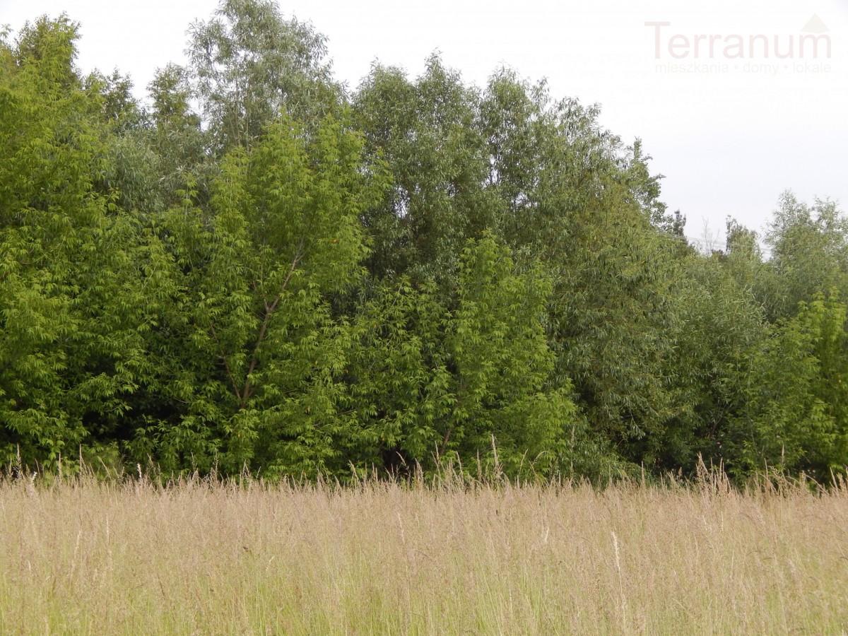 Lesznowola