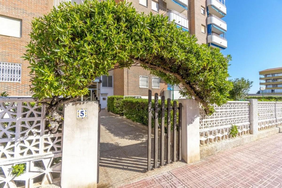 Apartament z widokiem na morze i park palmowy w Punta Prima Torrevieja