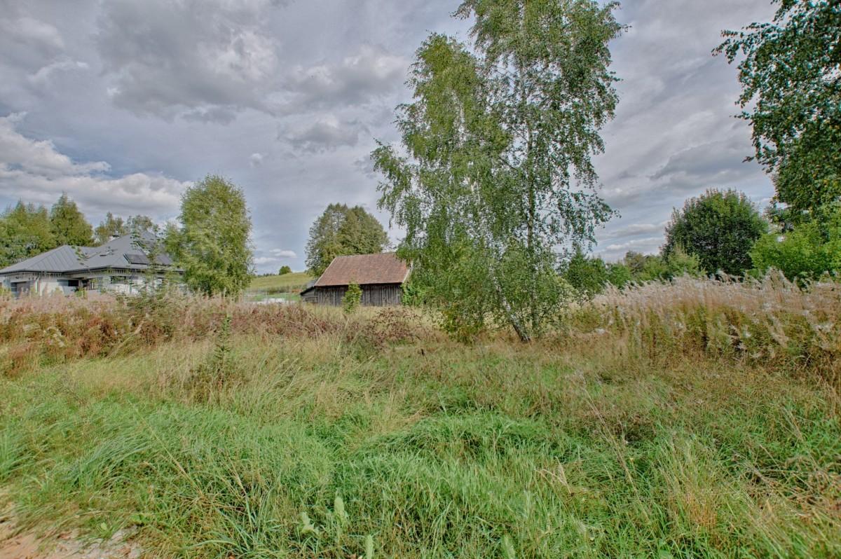 Studzianki