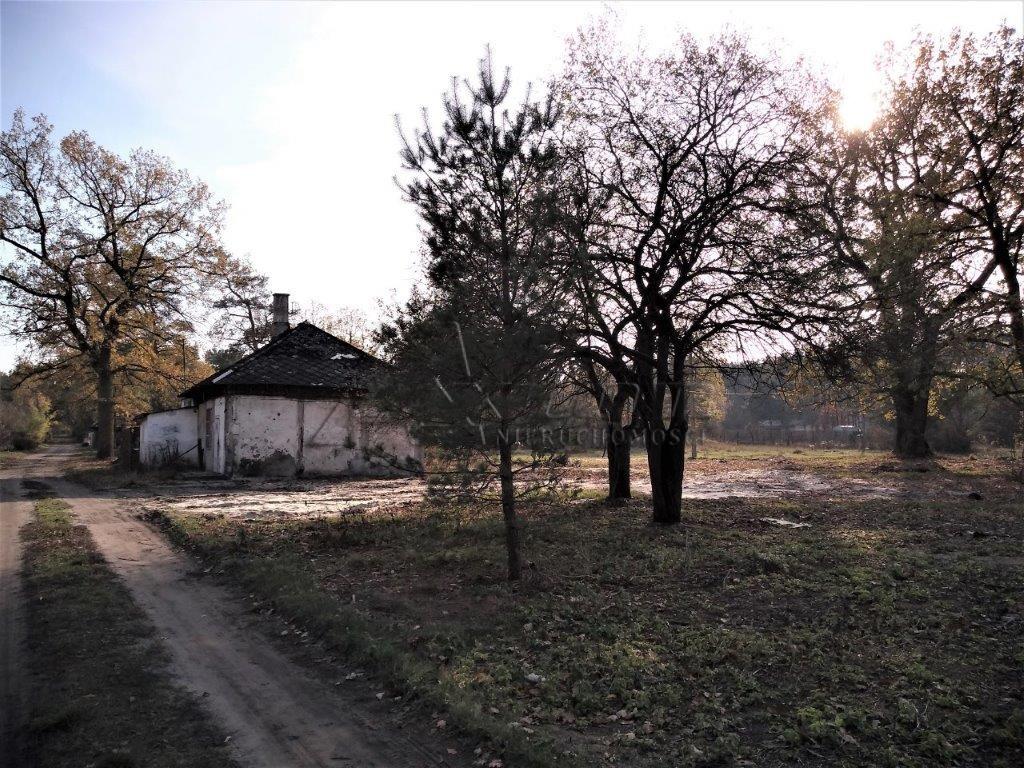Warszawa Wawer Barwinkowa