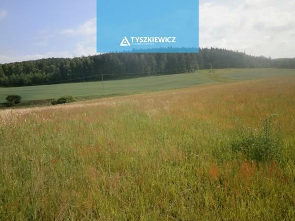 Działka rolna na sprzedaż TY926615
