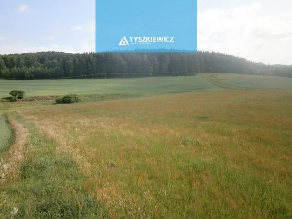 Działka rolna na sprzedaż TY364057