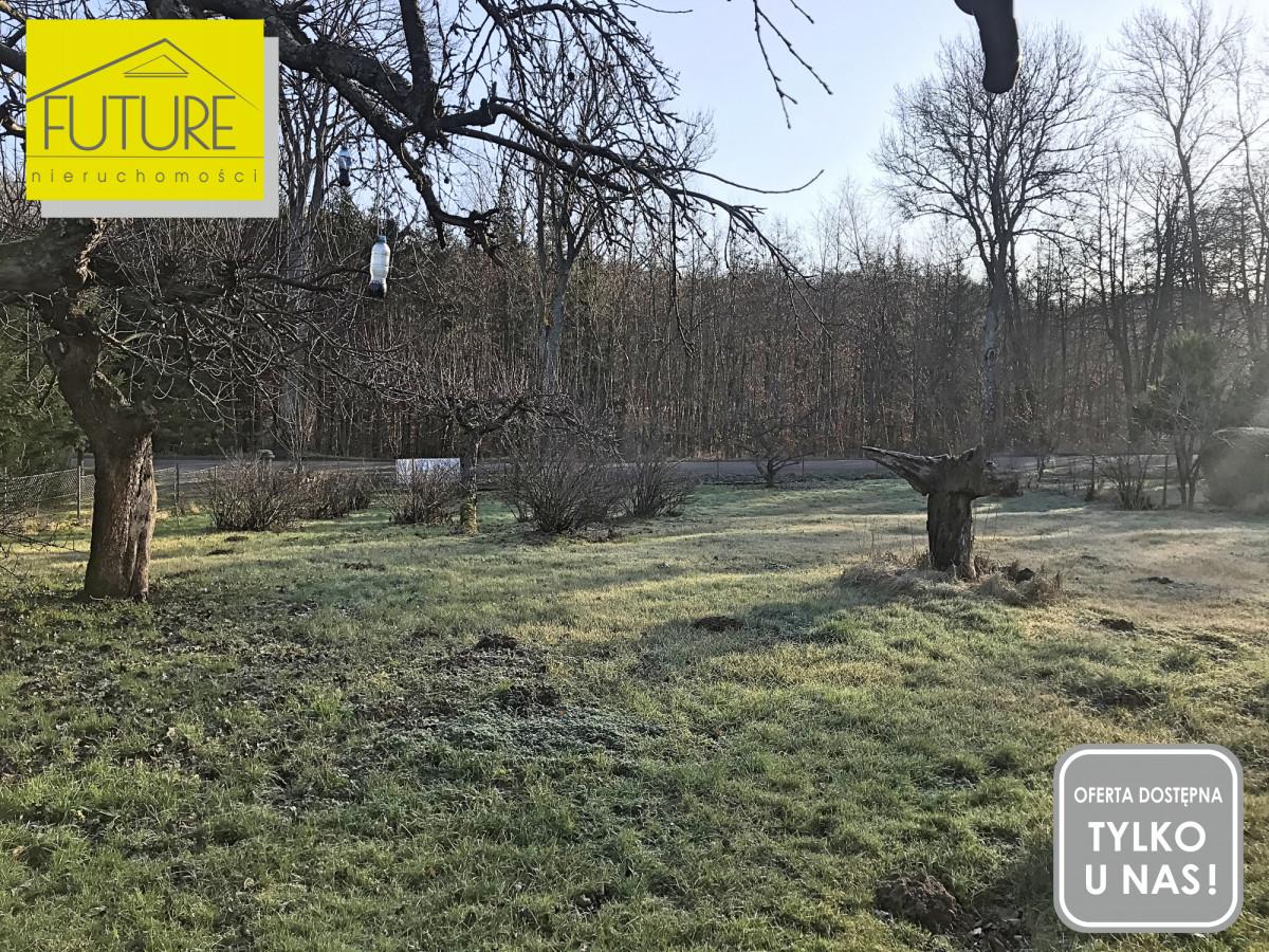 Kraskowo Gardyny-Leśniczówka