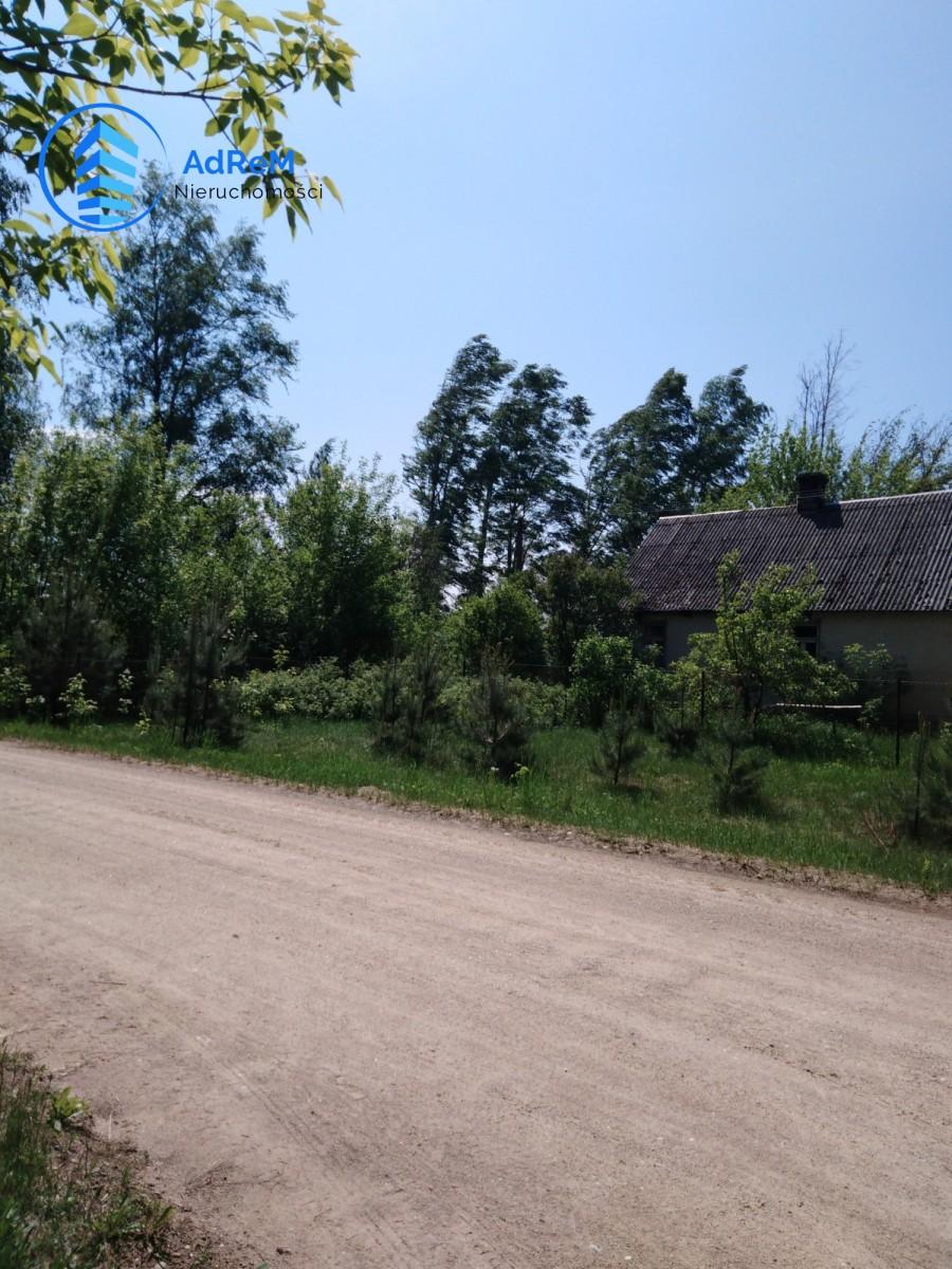 Oliszki