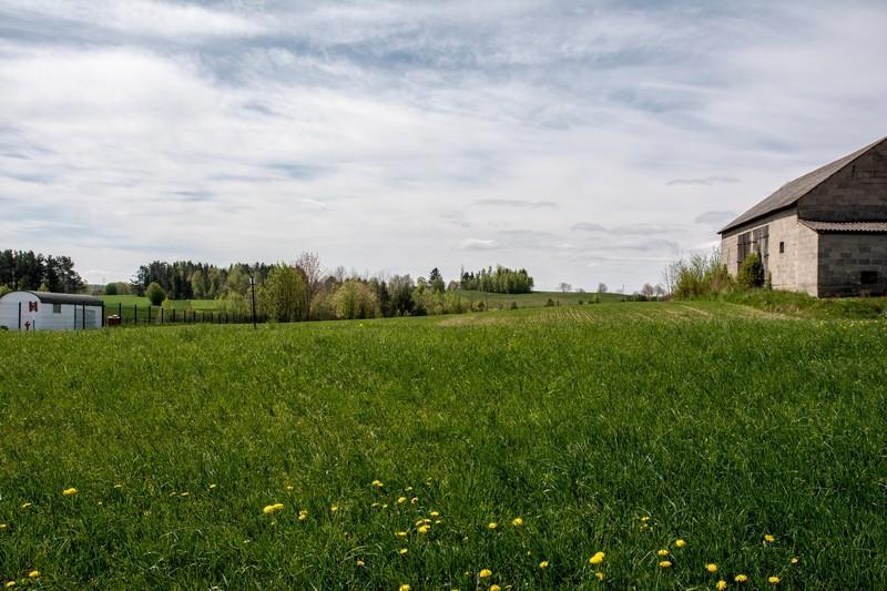 Jeleńska Huta Wietrzna