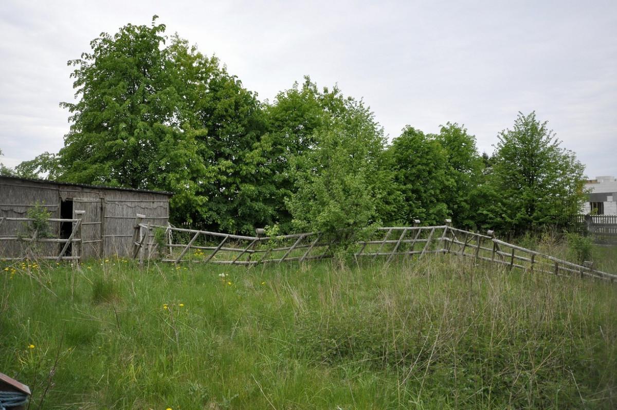 Brudzewo